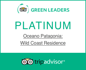 Platinum Green Leader