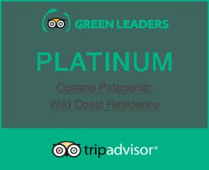 Platinum Green Leader